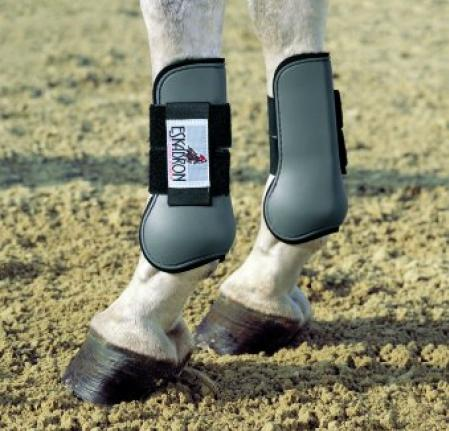 Horse boots, front horse tendon boots